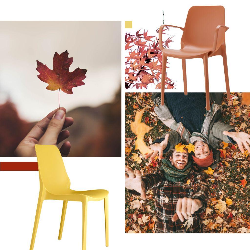 Con Ginevra è la stagione del Foliage
